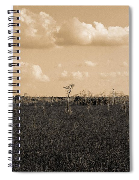 Lone Cypress Spiral Notebook