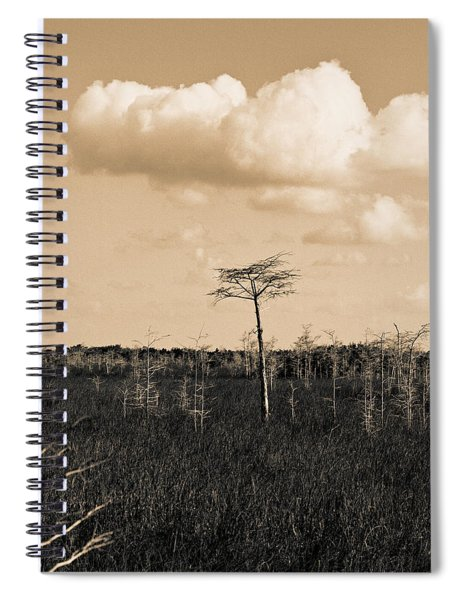 lone cypress III Spiral Notebook
