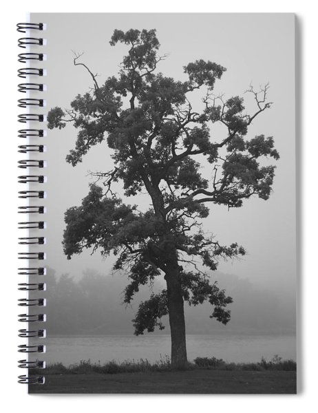 Lone Oak Spiral Notebook