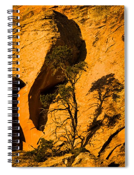 Lone Tree At Landscape Arch Spiral Notebook