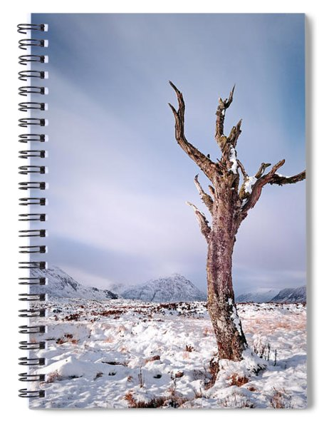 Lone Tree In The Snow Spiral Notebook