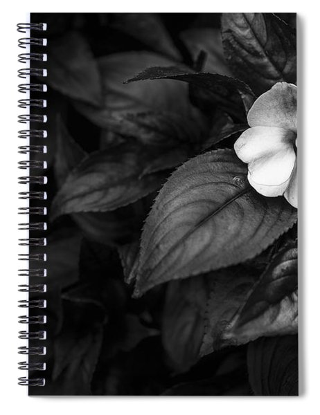 Lonely 1 Spiral Notebook
