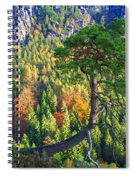 Lonely Tree In The Elbe Sandstone Mountains Spiral Notebook
