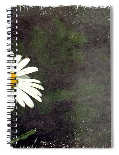 Lonesome Daisy Spiral Notebook