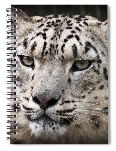 Look Into My Leopard Eyes Spiral Notebook
