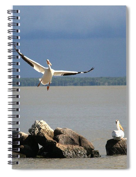 Look Ma - I Can Fly Spiral Notebook