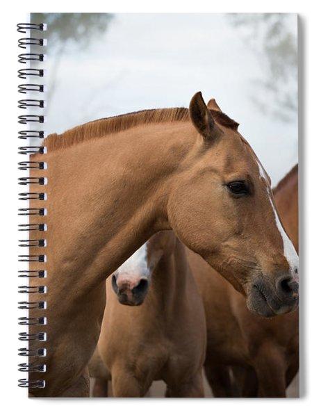 Los Caballos De La Estancia Spiral Notebook