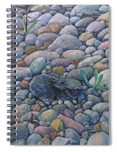 Lost And Found Rabbit Spiral Notebook