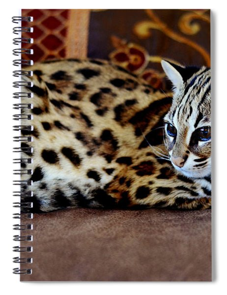 Lounging Leopard Spiral Notebook