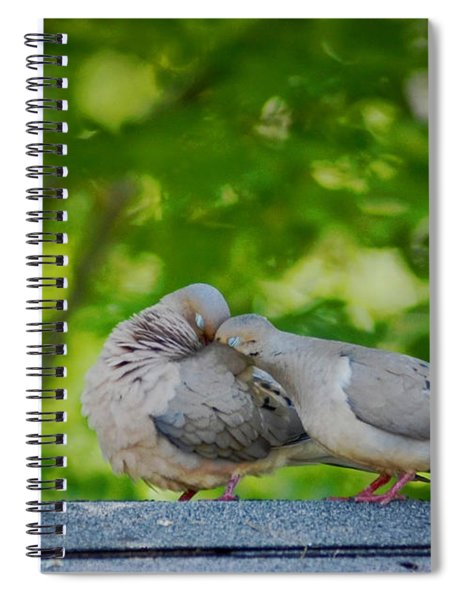 Love Doves  Spiral Notebook