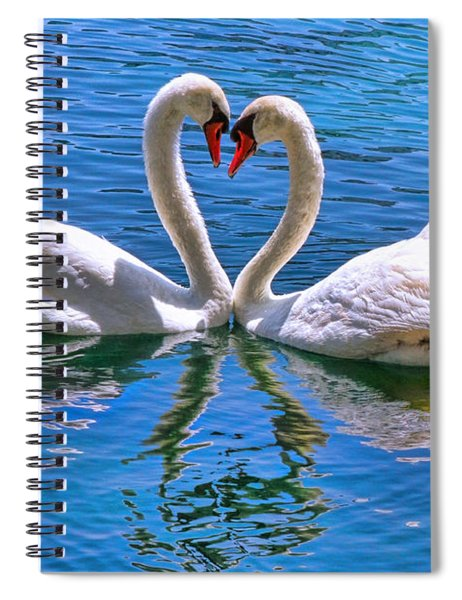 Love For Lauren On Lake Eola By Diana Sainz Spiral Notebook