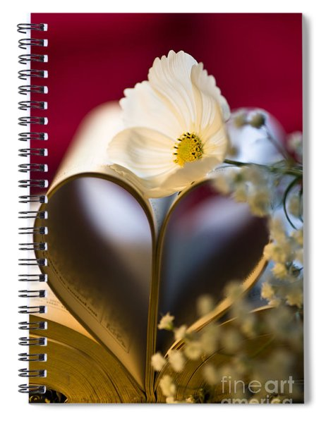Love Is All Around Spiral Notebook