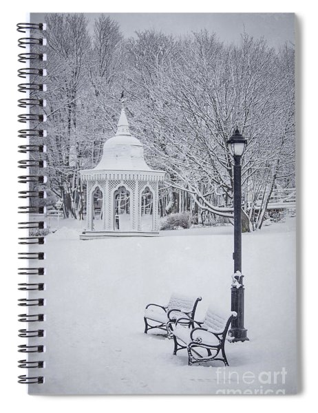 Love Through The Winter Spiral Notebook