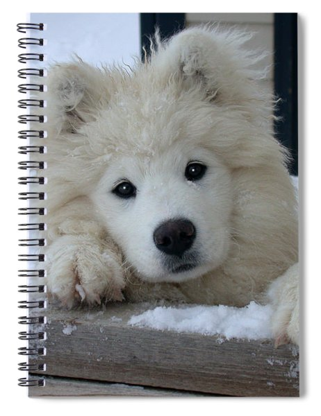 Loving The Snow Spiral Notebook