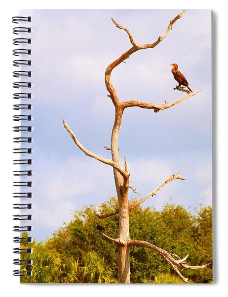 Low Angle View Of A Cormorant Spiral Notebook