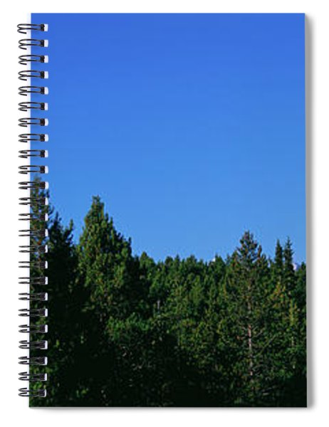 Low Angle View Of Trees With Mountain Spiral Notebook