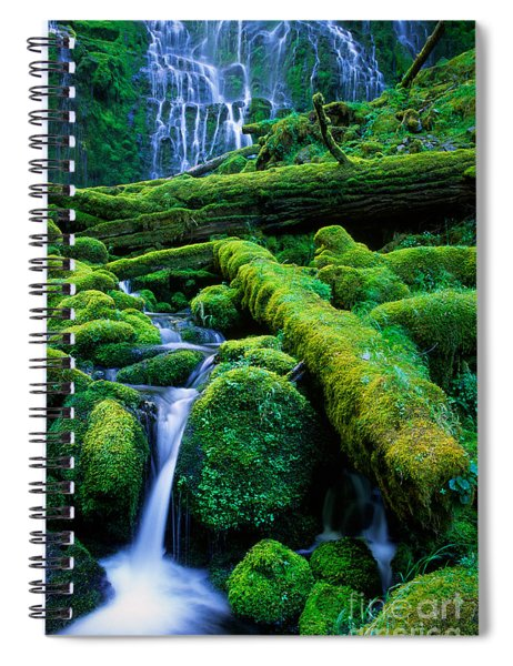 Lower Proxy Falls Spiral Notebook