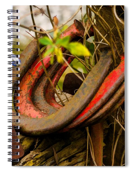 Lucky Horseshoes Spiral Notebook