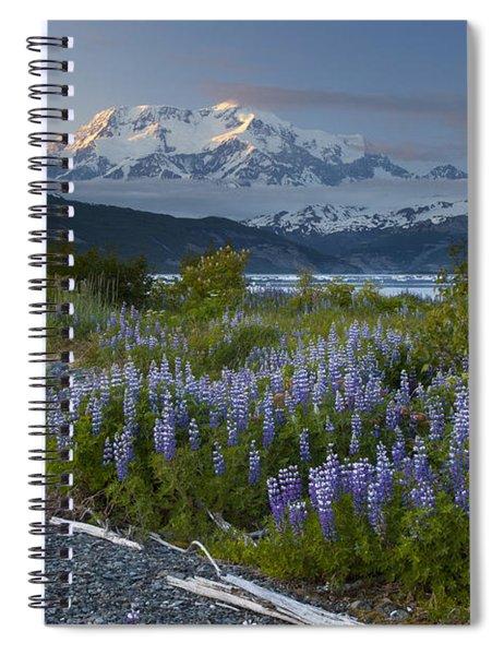 Lupine And Mount Elias Spiral Notebook by Matthias Breiter