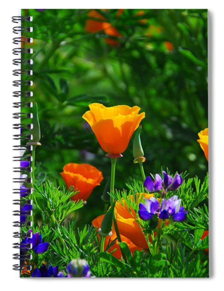 Lupines And Poppies Spiral Notebook