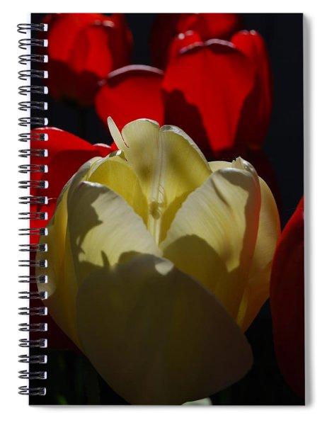Lurking Shadow Spiral Notebook