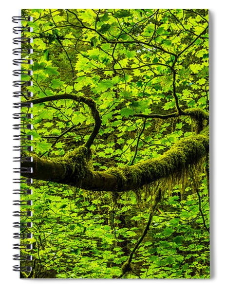 Lush Spiral Notebook