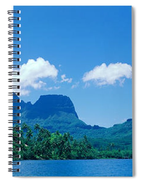 Lush Foliage And Rock Formations Spiral Notebook