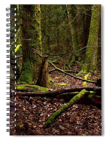 Lush Green Forest Spiral Notebook