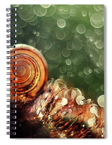 Magic Forest Spiral Notebook