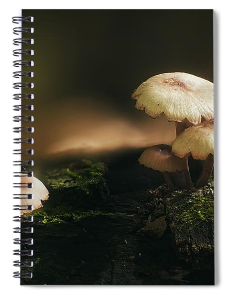 Magic Mushrooms Spiral Notebook