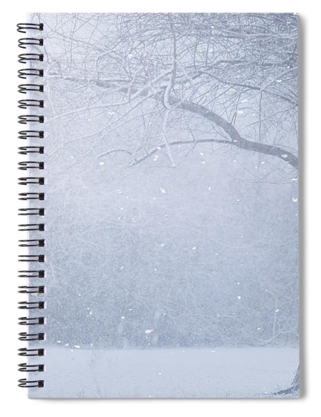Magic Of The Season Spiral Notebook
