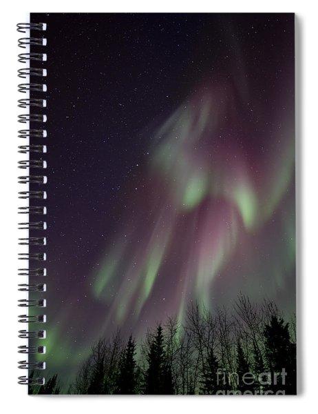 Magnificence Spiral Notebook by Priska Wettstein
