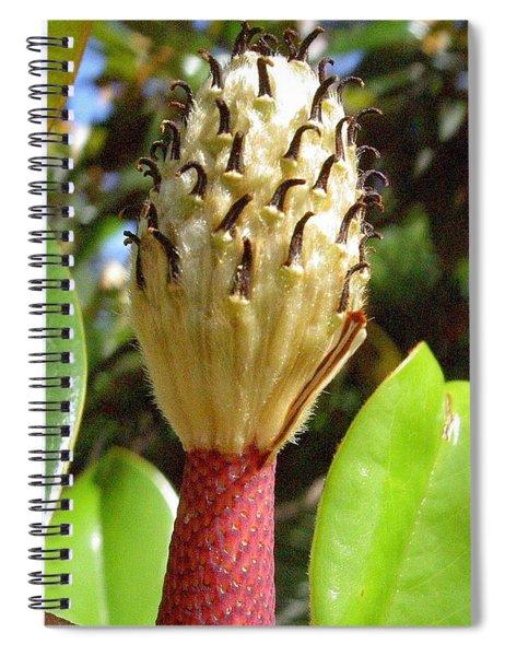 Magnolia Faith  Spiral Notebook
