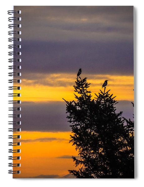 Magpies At Sunrise Spiral Notebook