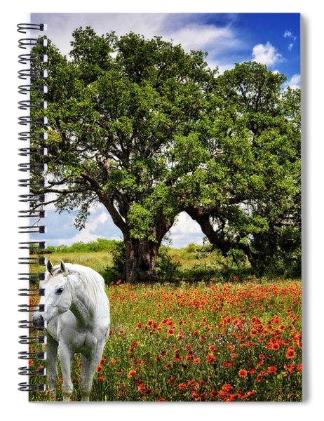 Majestic Beauty Spiral Notebook