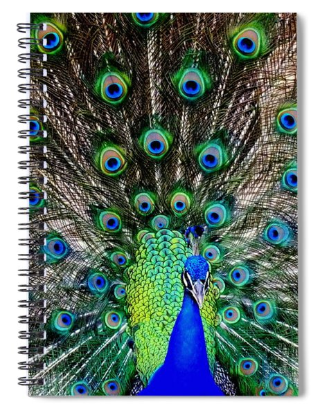 Majestic Blue Spiral Notebook