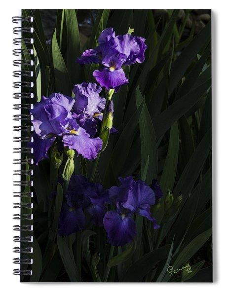 Majestic Spotlight Spiral Notebook