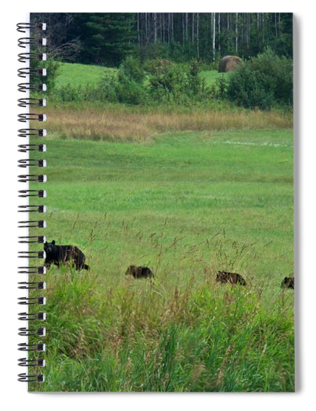Mama Bear And 4 Cubs Spiral Notebook