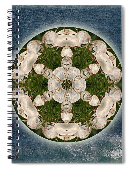 Manifesting Abundance Spiral Notebook