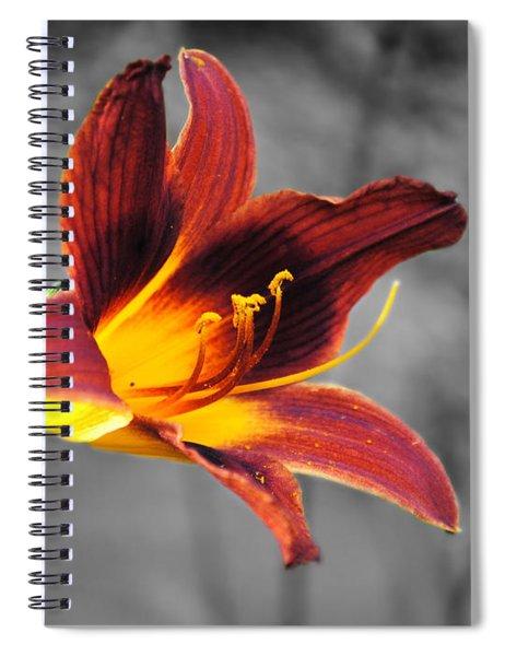 Margo's Lily Spiral Notebook