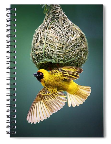 Masked Weaver At Nest Spiral Notebook
