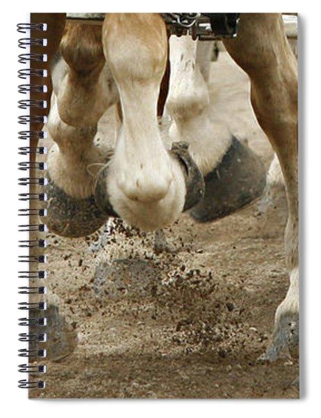 Match 'em Up Spiral Notebook