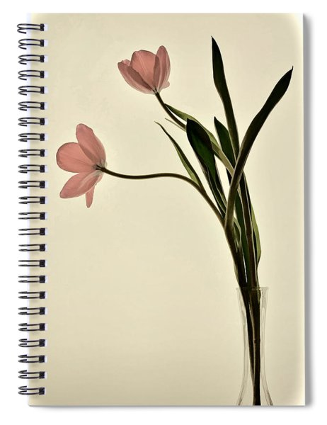 Mauve Tulips In Glass Vase Spiral Notebook