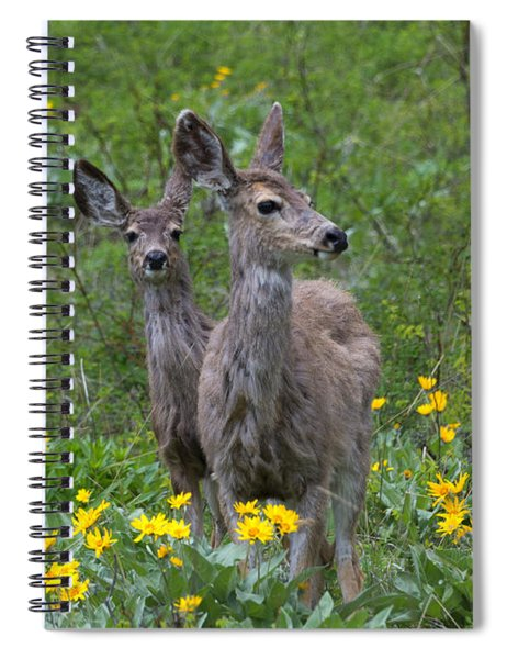 Meadow Meal Spiral Notebook