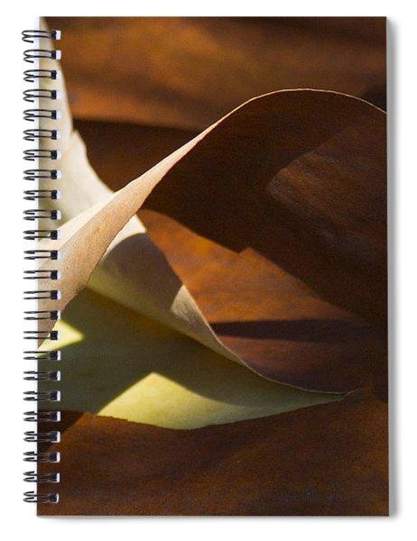 Mebius Strip Spiral Notebook