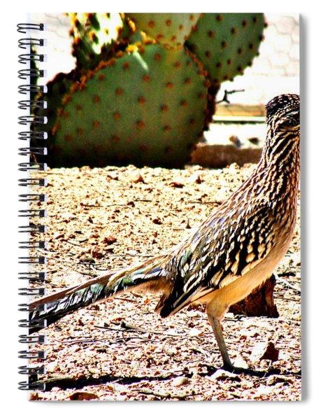 Meep Meep Spiral Notebook