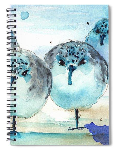 Meet The Sanderlings Spiral Notebook