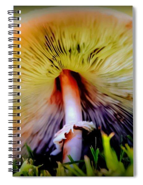 Mellow Yellow Mushroom Spiral Notebook