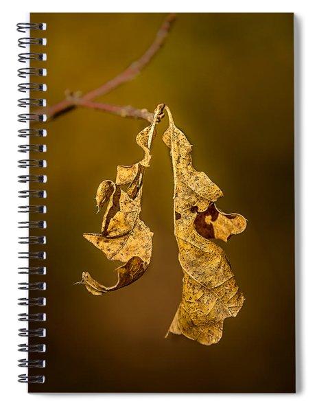 Memento Mori Spiral Notebook