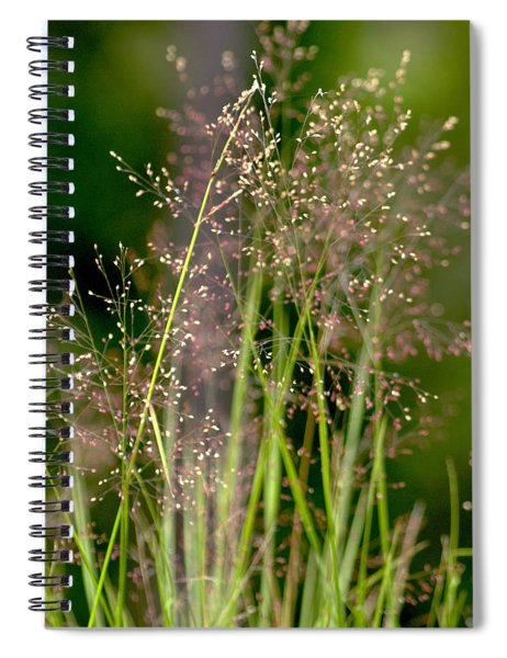 Memories Of Springtime Spiral Notebook